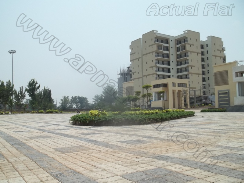 3 BHK 1650 Sq ft 10th floor of S+11   Zirakpur Patiala Highway   Zirakpur   Punjab   Apnaaghar.com