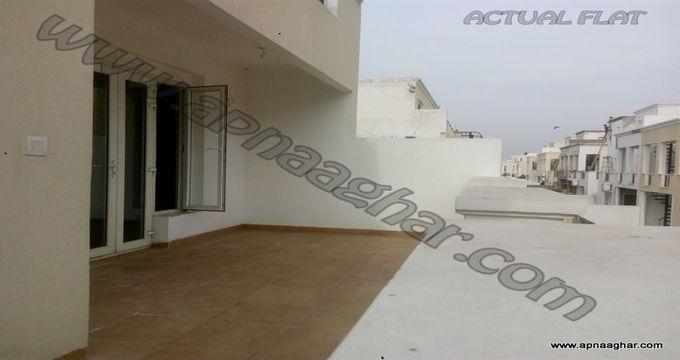 6 BHK 3600 sq ft   Flat Pent House  VILLA   Mohali  Bunglow  Chandigarh  Punjab   Zirakpur  Apnaaghar.com   9781191177