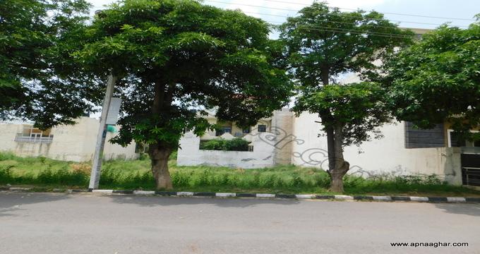 2376 sq ft|Independent House |Plot |Duplex|Flat| Villa| Mohali| Kharar | Chandigarh| Punjab | Zirakpur| Apnaaghar.com | 9781191177